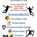 Mistrzostwa Województwa Juniorów w piłce ręcznej