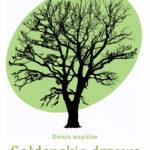 Gołdapskie drzewa wzdłuż Green Velo