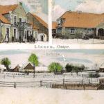 Z archiwum: Lisy w starej fotografii