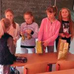 Szkoła Podstawowa nr 2 o bardzo dobrą kondycję dba!