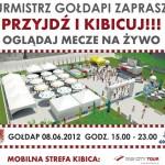Plakat Strafa Kibica_2