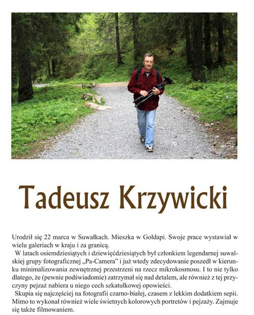t_krzywicki_plakat