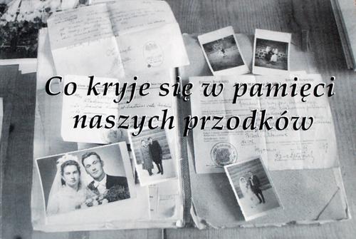 zabrost_5