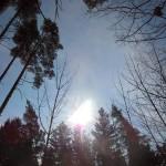 wiosna_4