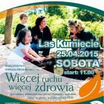 wrwz2015