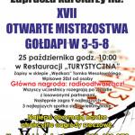 3-5-8 puchar plakat andrzej październik 2015