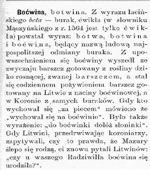 bocwinka_2