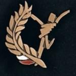 odznaka za zasługi dla sportu