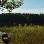 landscape-1155506_640