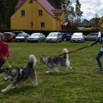 festyn_zdrowotny (5)