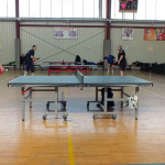 pingpong (13)