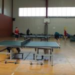 pingpong (14)