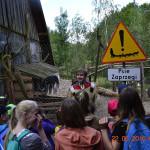 biegnacy_wilk (6)