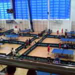 tenis (6)