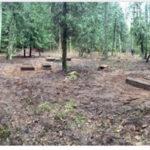 Gołdapskiego Stowarzyszenie Historyczne ARCHEO zaprasza do współpracy przy uporządkowaniu dwóch cmentarzy w Łobodach