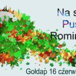 XIV Turniej Piłki Siatkowej Leśników