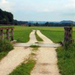 Agroturystyka  i aktywność