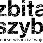 ZbitaSzybka.pl