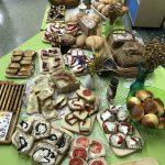 Od ziarenka do bochenka, czyli jak powstaje chleb?