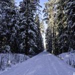 Komunikat Urzędu Miejskiego w Gołdapi  w sprawie zimowego utrzymania ulic w mieście i dróg w gminie Gołdap na sezon 2020/2021